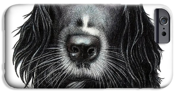 Black Dog iPhone Cases - Rummy iPhone Case by Danielle R T Haney