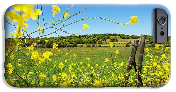 Agriculture iPhone Cases - Rural Landscape iPhone Case by Carlos Caetano