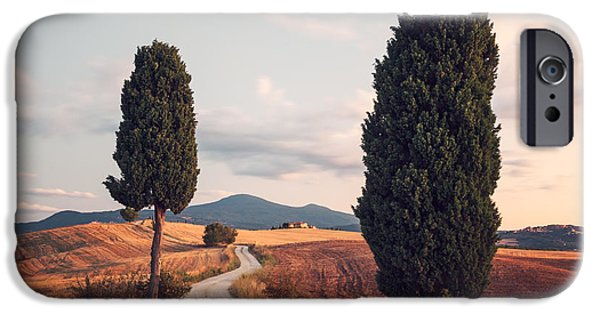 Tuscan Road iPhone Cases - Rural road with cypress tree in Tuscany Italy iPhone Case by Matteo Colombo
