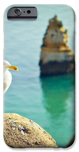 seagull on the rock iPhone Case by Raimond Klavins