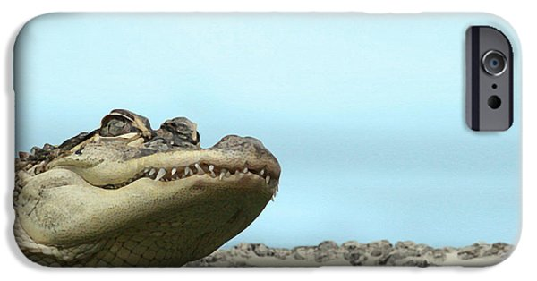 Alligator iPhone Cases - See You Later Alligator iPhone Case by Ellen Henneke