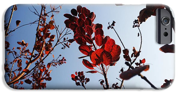 Lucy D iPhone Cases - Shadows iPhone Case by Lucy D