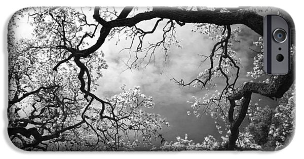 Monotone iPhone Cases - Sheltering Sky  iPhone Case by Laurie Search