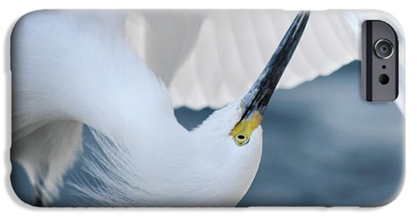 Snowy Pyrography iPhone Cases - Snowy Egret iPhone Case by Valia Bradshaw