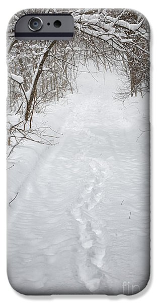 Snow iPhone Cases - Snowy winter path in forest iPhone Case by Elena Elisseeva