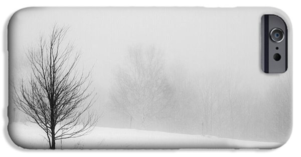 Fog Mist iPhone Cases - Solitude iPhone Case by Alana Ranney