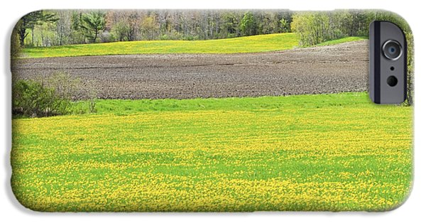 Maine Farms iPhone Cases - Spring Farm Landscape With Dandelion bloom in Maine iPhone Case by Keith Webber Jr