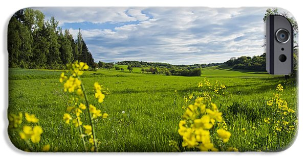 Vale iPhone Cases - Summer Meadow iPhone Case by Mountain Dreams