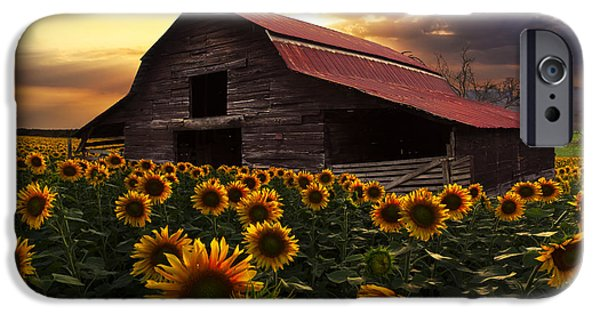 Old Barns iPhone Cases - Sunflower Farm iPhone Case by Debra and Dave Vanderlaan