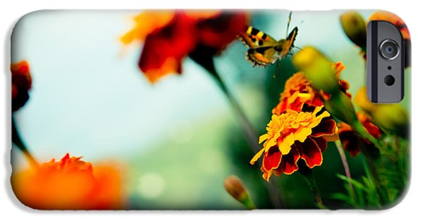 Buterfly iPhone Cases - Tagetes and Buterfly fly away  iPhone Case by Raimond Klavins