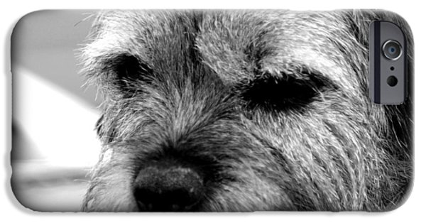 Recently Sold -  - Black Dog iPhone Cases - Teddy iPhone Case by Sharon Lisa Clarke