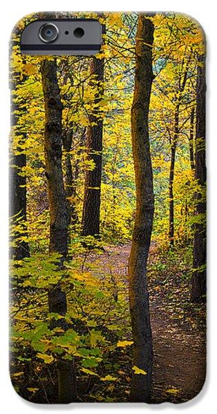 The Magic Forest  iPhone Case by Saija  Lehtonen