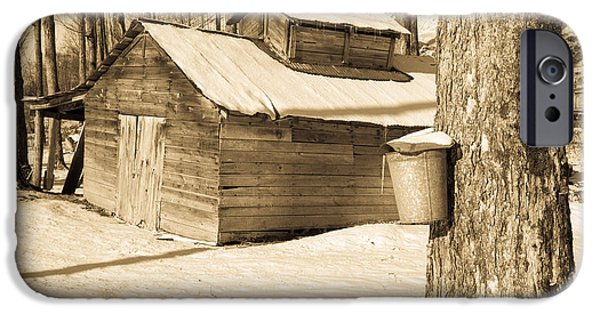 Agricultural iPhone Cases - The Old Sugar Shack iPhone Case by Edward Fielding