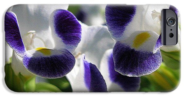 Duchess iPhone Cases - Torenia from the Duchess Mix iPhone Case by J McCombie