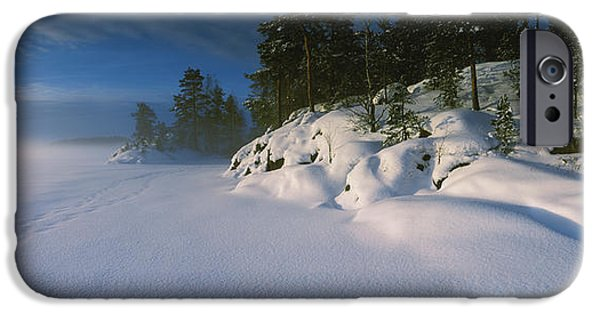 Frozen Lake iPhone Cases - Trees Along A Frozen Lake, Saimaa iPhone Case by Panoramic Images