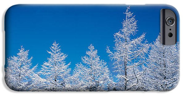 Snow Covered Trees iPhone Cases - Utsukushigahara Nagano Japan iPhone Case by Panoramic Images