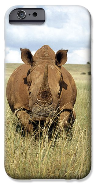 Lips iPhone Cases - White Rhino iPhone Case by Mark Newman