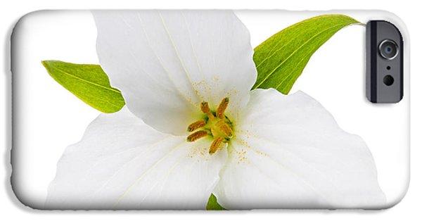Cutout Photographs iPhone Cases - White Trillium flower  iPhone Case by Elena Elisseeva