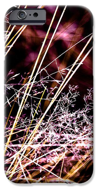 Wild Grasses Abstract iPhone Case by Natalie Kinnear