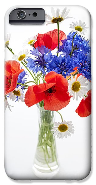Flower Design Photographs iPhone Cases - Wildflower bouquet iPhone Case by Elena Elisseeva
