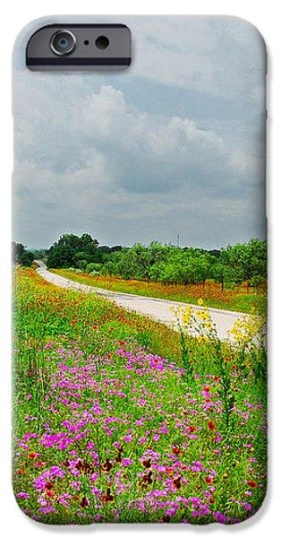 Wildflower Wonderland iPhone Case by Lynn Bauer