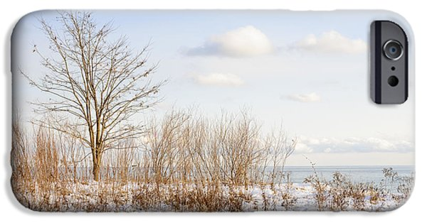 Snowy iPhone Cases - Winter shore of lake Ontario iPhone Case by Elena Elisseeva