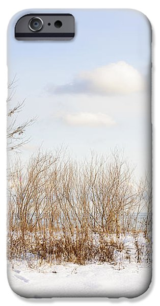 Winter shore of lake Ontario iPhone Case by Elena Elisseeva