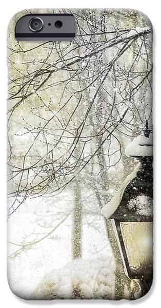Winter Storm Digital iPhone Cases - Winter Stillness iPhone Case by Julie Palencia