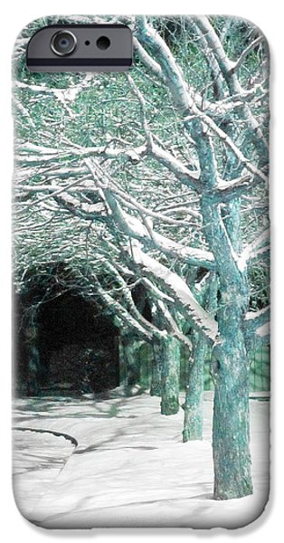 Guy Ricketts Photography iPhone Cases - Winter Trees iPhone Case by Guy Ricketts