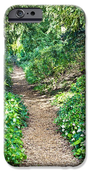 Walking Beat iPhone Cases - Woodland path iPhone Case by Tom Gowanlock