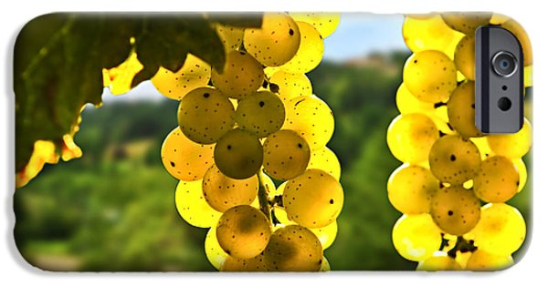 Summer iPhone Cases - Yellow grapes iPhone Case by Elena Elisseeva