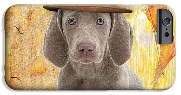 Weimaraner iPhone Cases - Weimaraner Collection iPhone Case by Marvin Blaine