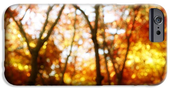 Leaf Change iPhone Cases - Autumn iPhone Case by Les Cunliffe