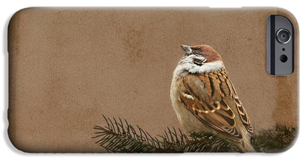 Flora Mixed Media iPhone Cases - Sparrow iPhone Case by Heike Hultsch