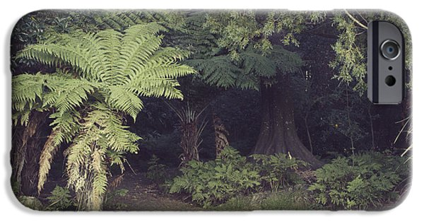 Pathway iPhone Cases - Forest iPhone Case by Les Cunliffe