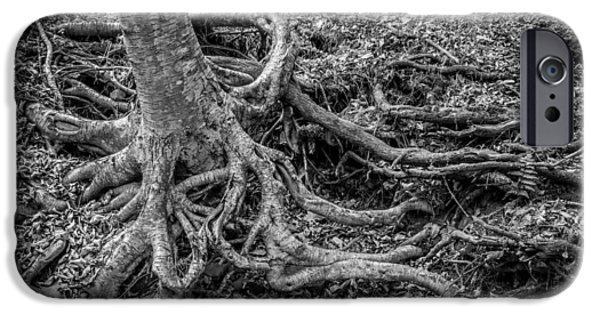 Tree Roots iPhone Cases - Waterfalls George W Childs National Park Painted BW   iPhone Case by Rich Franco