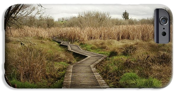 Pathway iPhone Cases - New Zealand iPhone Case by Les Cunliffe