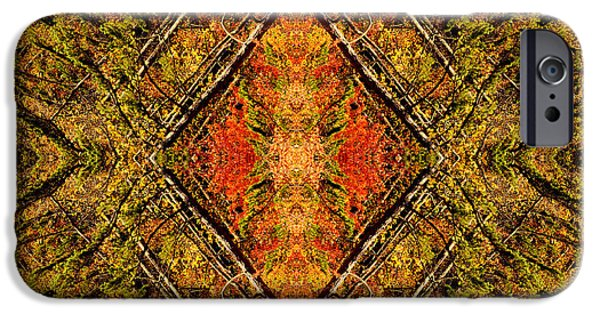 Nature Abstracts iPhone Cases - Nature Kaleidoscopes and Abstracts iPhone Case by Eric Abernethy