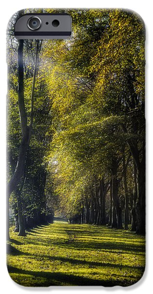 Alley iPhone Cases - Alley iPhone Case by Joana Kruse