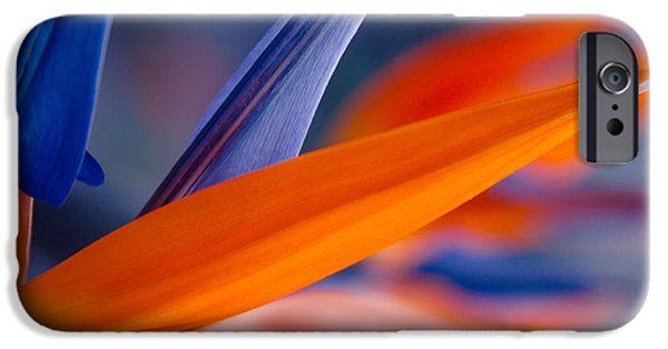 Abstracts iPhone Cases - Art by Nature iPhone Case by Sharon Mau