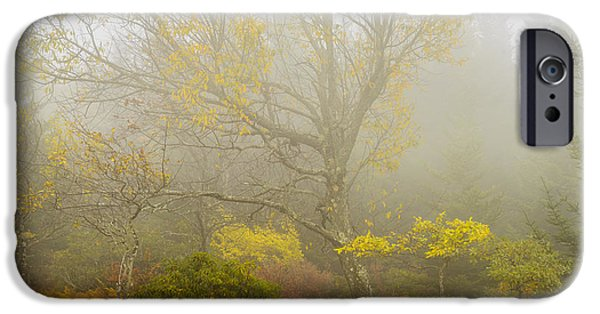 Sod iPhone Cases - Autumn Fog Dolly Sods iPhone Case by Thomas R Fletcher