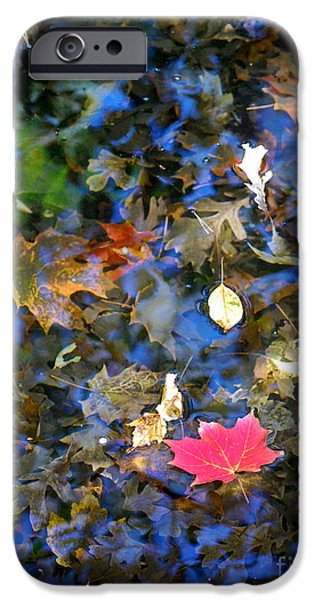 Autumn iPhone Cases - Autumn Reflections 2 iPhone Case by Nancy Mueller