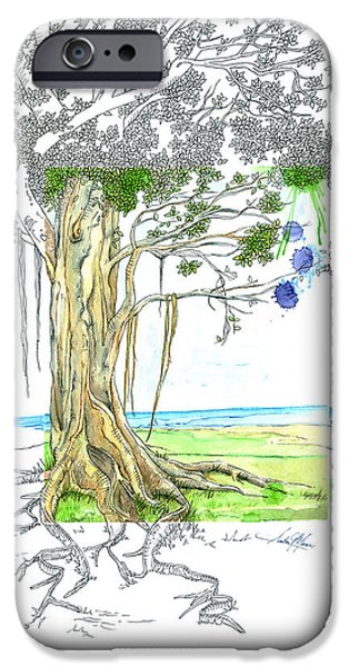 Tree Roots Mixed Media iPhone Cases - Banyan Tree iPhone Case by Amber M  Moran