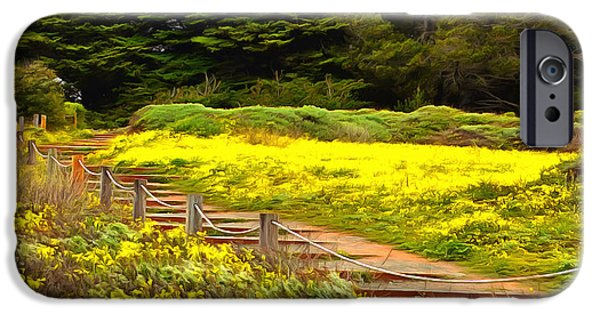 Cambria iPhone Cases - Painting Walkway To The Beach iPhone Case by Barbara Snyder