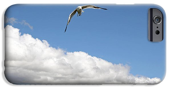 Seagull Glass Art iPhone Cases - Bariloche Argentina iPhone Case by Jim McCullaugh