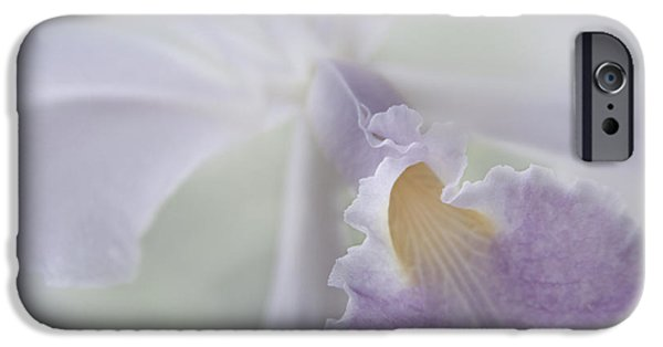 Cattleya iPhone Cases - Beauty in a Whisper iPhone Case by Sharon Mau