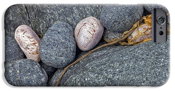 Alga iPhone Cases - Coastal Rocks And Pebbles iPhone Case by Dr Keith Wheeler