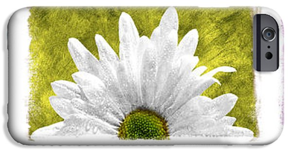 Abstract Digital Pyrography iPhone Cases - 3 Daisies  iPhone Case by Mauro Celotti