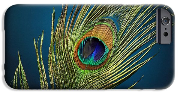 Fed iPhone Cases - Feathers iPhone Case by Mark Ashkenazi