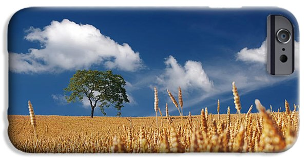 Field Photographs iPhone Cases - Fields of Grain iPhone Case by Mountain Dreams